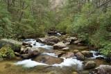 Middle Saluda River 2