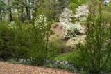 Biltmore Gardens 5