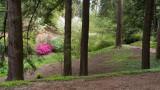 Biltmore Gardens 6