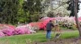 Biltmore Gardens 8