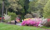 Biltmore Gardens 10