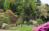 Biltmore Gardens 11
