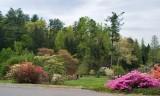 Biltmore Gardens 12