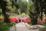 Biltmore Gardens 14