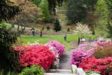 Biltmore Gardens 15