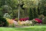 Biltmore Gardens 19