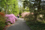 Biltmore Gardens 20
