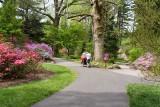 Biltmore Gardens 21