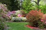 Biltmore Gardens 22