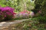 Biltmore Gardens 26