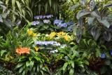 Biltmore Gardens 32