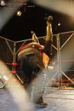 100123 AWS Wrestling 1464.jpg