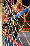 100123 AWS Wrestling 1497.jpg