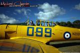080503 Camp Quality Air 644.jpg