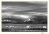 20080803_Pincher Creek_0002 BW.jpg
