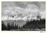 20100422_Banff_0108_09_10.jpg