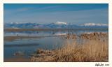20100507_Bear River_0447.jpg