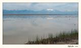 20100508_Bear River_1279.jpg