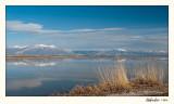 20100508_Bear River_1287.jpg