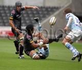 Ospreys v Leicester23.jpg