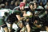 Ospreys v Leicester21.jpg
