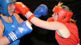 Welsh aba Boxing Champs3.jpg
