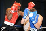 Welsh aba Boxing Champs5.jpg
