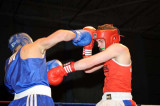 Welsh aba Boxing Champs10.jpg