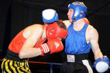 Welsh aba Boxing Champs11.jpg