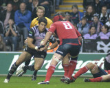 Ospreys-v-Munster16.jpg