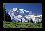 MountRainier_0050-copy-b.jpg