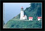OregonCoast0105-copy-b.jpg