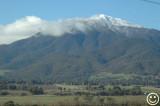 DSC_2325 Mt. Bogong Vic.jpg