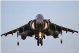 Harrier Landing 9483.JPG