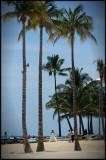 Hawaii 01 - Waikiki Wedding