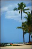 Hawaii 02 - Waikiki