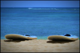 Hawaii 08 - Waikiki