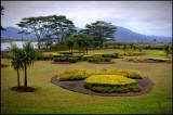 Hawaii 10 - Oahu, Pineapple plantation
