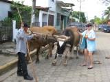 Wayne, Paula, Doris and Charles Adventure in San Juan del Sur