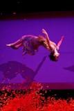 L'atelier du peintre par le cirque plume - 4 mars 10 - Odyssud