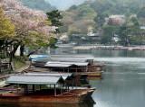 Arashiyama scene
