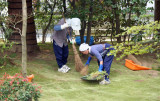 Cleaning gardens at Ryoanji Temple