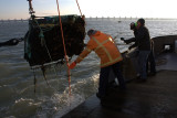 Attaching one of the C-Pods to a buoy