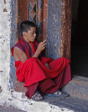 Young Monk Cell Phone