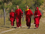 Monks from Chhimi Lhakhang Monastery