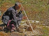 Making Walking Sticks