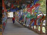 Prayer Flags inside Bridge