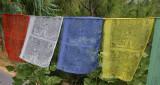 Player Flags Closeup