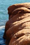 P1070967-2 Bouledogue surveillant la mer