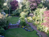 Garden 19 July 2009